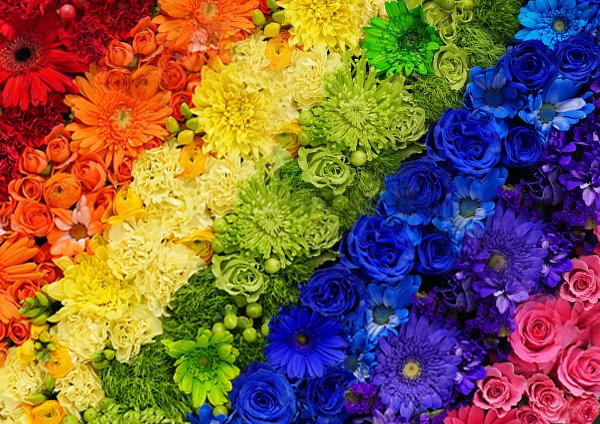600x424xproducts-multicolour-flowers-jetfreshflowers.jpg.pagespeed.ic.O3mqmEP-Zp